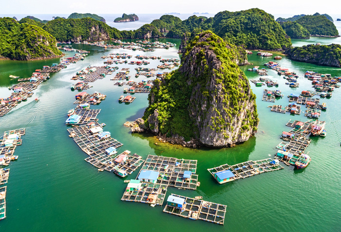 Hanoi & Ha Long Bay overnight on cruise 4D3N