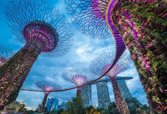 SINGAPORE F&E 4D3N