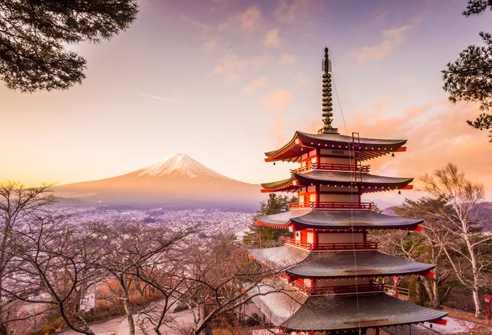 Tokyo & Osaka Package 7D6N